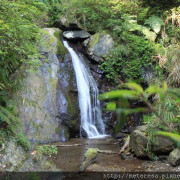 【南投埔里】。觀音瀑布。親子旅行,步行5分鐘就能看見第一道瀑布!