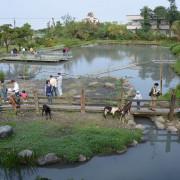 宜農牧場~~宜蘭親子景點.近距離接觸可愛小動物