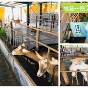 圓圓家出去玩-<宜蘭冬山>宜農羊牧場門票只要NT$30元,小羊喝奶奶、搶牧草超可愛,超受孩子們歡迎的親子景點