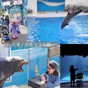 花蓮遠雄海洋公園|花蓮親子景點|花蓮景點|海獅海豚表演秀|