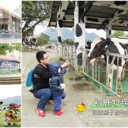 【台東景點】卑南鄉 初鹿牧場 ● 與荷蘭乳牛的近距離接觸 ● 親子台東踩點趣!❤❤