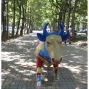 『台東旅遊+美食』台東親子必去景點初鹿牧場。。喝最新鮮的初鹿鮮奶@大自然山坡上看藍天白雲@炎熱夏天打水仗+台東必吃經典【米台目】!!