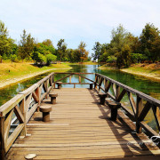 [ 台東⊙景點]台東森林公園。靜謐之美的琵琶湖
