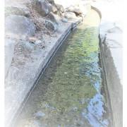 //台東景點//水往上流奇觀。在力爭上游的水,道底為何會這樣呢?好奇的您請繼續看下去