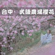 【台中旅遊/景點】武陵農場櫻花季 漢服結合台中絕美櫻花聖地 不用到日本就能享受櫻花盛宴!