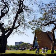 在東海大學尋訪路思義教堂之美。文理大道探訪文學風情。乳品小棧吃冰。東海湖畔吹風賞景