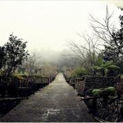【南投‧鹿谷】溪頭自然教育園區/溪頭森林遊樂區‧遼闊的森林,走趟溪頭享受芬多精的洗澧