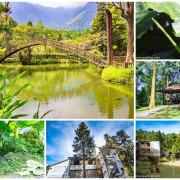 溪頭自然教育園區~溪頭門票資訊、導覽地圖、建議路線,豐富的溪頭生態導覽