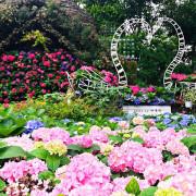 【苗栗 卓蘭】花露農場 Flower Home🌺🌺🌺4-6月有超美繡球花,浪漫滿園,讓你照片拍不完,還有精油主題館和住宿,更有景觀餐廳,來到這可以玩上大半天😉-上篇