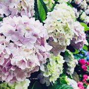 【苗栗 卓蘭】花露農場 Flower Home🌺🌺🌺4-6月有超美繡球花,浪漫滿園,讓你照片拍不完,還有精油主題館和住宿,更有景觀餐廳,來到這可以玩上大半天😉-下篇