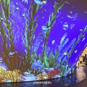 歌劇院也有熱帶叢林與海底世界!期間限定【光之曲幕 T.A.P. Project】免門票帶你沉浸光影世界