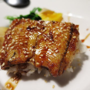 江戶龍鍋物。平價日本料理均一價$138~   ..首發初體驗!!!
