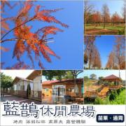 通霄|藍鵲休閒農場.玩高爾夫賞落羽松森林末班車