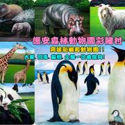 ❤[玩-仁武]高雄仁武有動物園??走!來去仁武後安森林動物園彩繪村!!