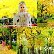 《遊║台中》江川公園~夏季限定阿勃勒