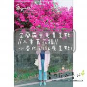 [旅遊]羅東免費景點//九重葛花牆//小巷內的私房景點!!--宜蘭縣羅東鎮