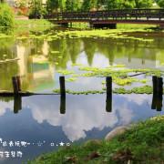 [ 彰化⊙大村 ]平和村祕密花園(生態池)就好比是中部雲山水