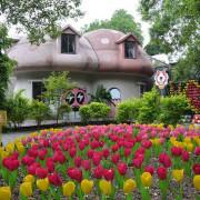 竹東動漫園區~~巨大蘑菇屋和暴龍超吸睛