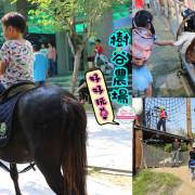 台南親子景點,樹谷農場好好玩!!雲端歷險繩索挑戰小朋友的勇氣與體力 - 緹雅瑪 美食旅遊趣