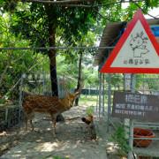 台南新市, 樹谷農場