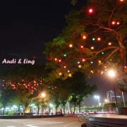 【雲林。斗六】環球科大鳳凰夫妻樹浪漫點燈。夜拍。鳳凰樹。愛月樓