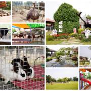 【嘉義-中埔鄉】親子同遊景點「獨角仙休閒農場」有大草皮、沙坑及萌萌的兔子、小牛小馬可餵食