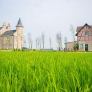 【宜蘭五結】法國小古堡-美如詩畫浪漫充滿異國情!免出國來去歐洲住一晚~雜誌旅遊節目推薦!(合作)