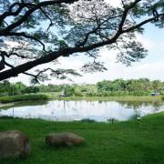 【遊記】高雄燕巢_阿公店森林公園@行走森林步道感受大自然的美 來一段生態探險與趣味玩耍的親子旅行