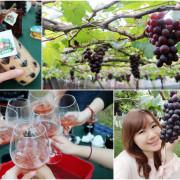 【台中新社】新峰農場-酋長女兒的家。手牽手採葡萄。DIY葡萄露
