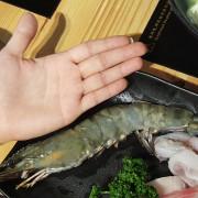 【食-新竹東區】鍋牛鍋物♥食材新鮮.湯頭美味♡可容納22人的獨立用餐空間♥團體聚餐也能享用個人鍋物♡新開店家