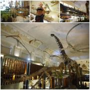 【台北】土銀 恐龍博物館。台北也有恐龍出沒。博物館驚魂夜翻版。恐龍迷千萬不能錯過。台灣博物館。台大醫院捷運站