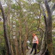 輕鬆好走的親子步道,賞遠景之外還能在大草原上奔跑︱桃園蘆竹五酒桶山步道