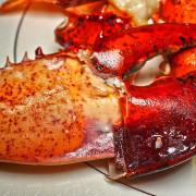 百家樂鐵板燒, 食材好超高CP值, 整隻龍蝦吃的超爽, 捷運中山國小站