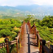 [ 嘉義⊙瑞里]太興岩步道。享受步道與茶園與森林交織的美