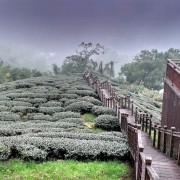 嘉義景點 ▎ 嘉義秘境推薦!太興岩步道+雲潭瀑布