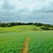 苗栗景點 ▎大南窩綠丘│苗栗秘境草原
