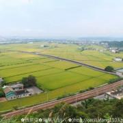 【苗栗。造橋鄉】遠眺阡陌縱橫稻田好風光。猶如綠色地毯讓人著迷~鄭漢步道