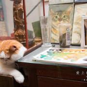 [食癮-下午茶]愛上咖啡|迷戀與貓共吻咖啡的午後時光|新竹縣北埔鄉