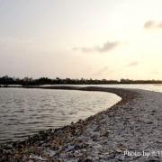 【屏東。東港鎮】小小片的蚵殼也能堆出小島?廢棄蚵殼日積月累居然真的堆出一座『蚵殼島』!這人文地景可是全台獨一無二,有興趣嗎?那就走吧!