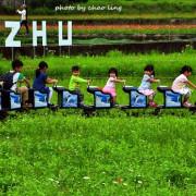 【蘆竹 / 賞花】2016桃園花彩節(蘆竹場)。不單花海,還有天鵝湖.小火車