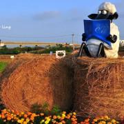 【中壢 / 賞花】2016桃園花彩節(中壢場)。跟著笑笑羊一起遊花田