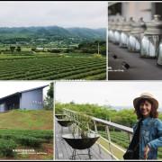 苗栗。台灣農林銅鑼觀光茶廠。露台瞰景追火車|賞茶園風光還有小葉欖仁樹步道