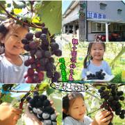 【南投景點.水里鄉】甘喜農場。現採葡萄體驗:「季節限定」親子同遊好去處