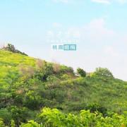 賞秋芒的好景點,也可不爬山︱桃園楊梅秀才步道