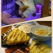 【高雄美食】小港區寵物餐廳 X 喵喵叫吐司catmyamya X 平價早午餐 X 手工現磨咖啡