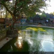 台北<板橋林家花園>裡面建築古色古香風景優雅,讓人也想探訪這文青好地方喔!