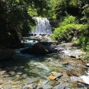 [南投遊記]走5-10分鐘就可到達淺溪處的私房景點!埔里-彩蝶瀑布,可親子同遊玩水,周圍圍繞蝴蝶,感受大自然的美!