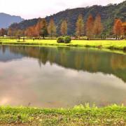 [宜蘭旅遊]員山私房景點蜊埤湖。彷彿身在國外的大片落羽松美景!