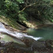 *新北坪林*私房景點【貴妃池】,冰涼清澈的泉水、高聳的樹蔭遮蔽,超級消暑勝地!!