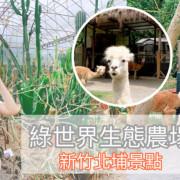 新竹親子一日遊景點 綠世界生態農場 跟草泥馬一起散步去!